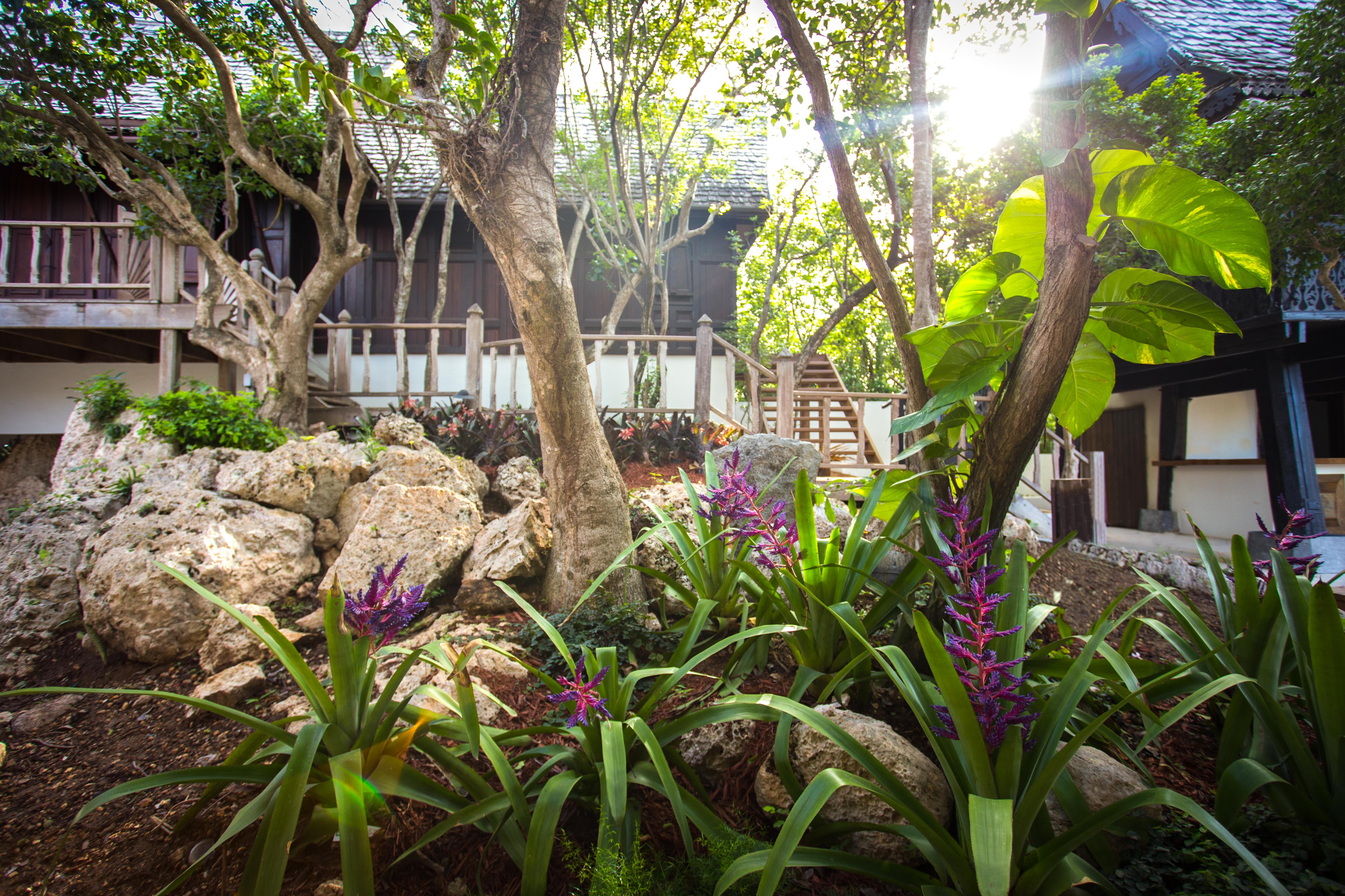 Taino Bathing Ritual and Anguilla's First House of Wellbeing